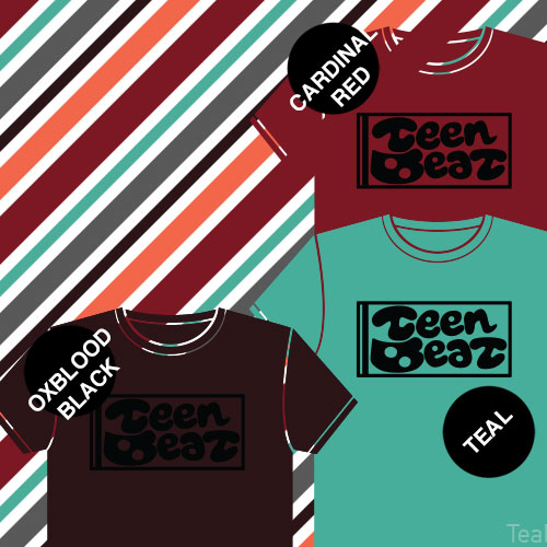 Teenbeat Records t-shirt